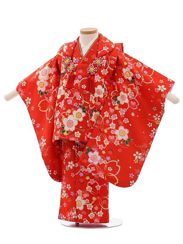 七五三(3歳女児被布)F419 赤地 桜