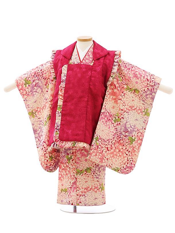 七五三レンタル(3歳女児被布)F519ボルドー小花地模様xボルドー地ピンク乱菊