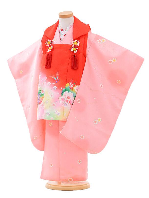 ▶七五三(3歳女被布)H005赤ピンクぼかし×ピンク桜