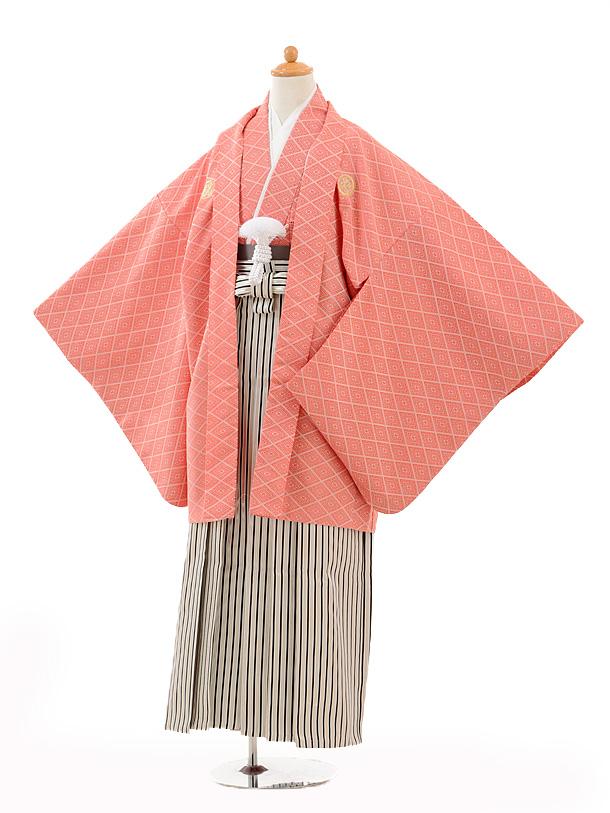 ジュニア袴男児0989赤紋付×黒シルバー縞袴