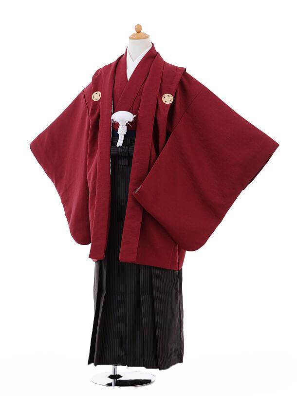 ジュニア袴男児9332エンジ色紋付×ダークグレーストライプ袴
