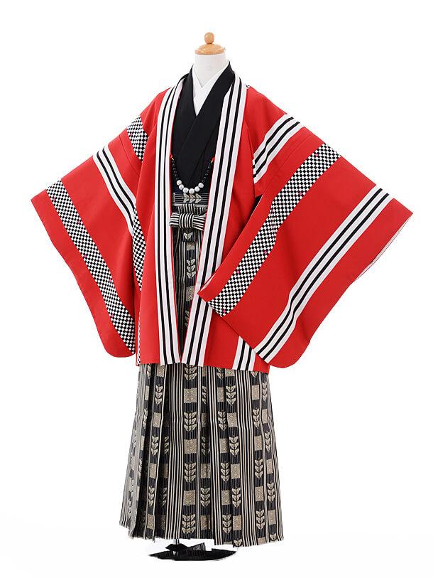 ジュニア袴男児9334赤ストライプ×黒ゴールド袴