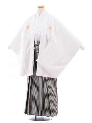 小学校 卒業式 男の子 袴 9446 白地菱柄紋付×白黒縞袴
