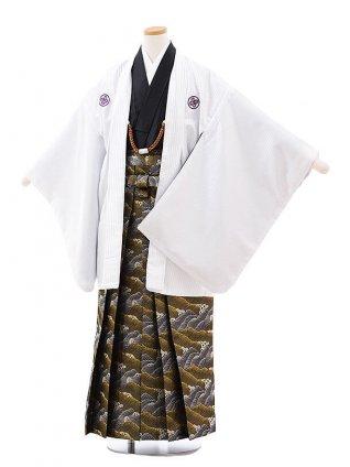 小学校 卒業式 男の子 袴 9712 花わらべ 白ストライプ紋付×黒金波袴