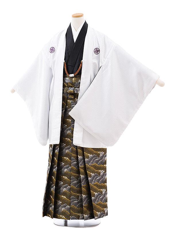 ジュニア袴男児9712 花わらべ 白ストライプ紋付×黒金波袴