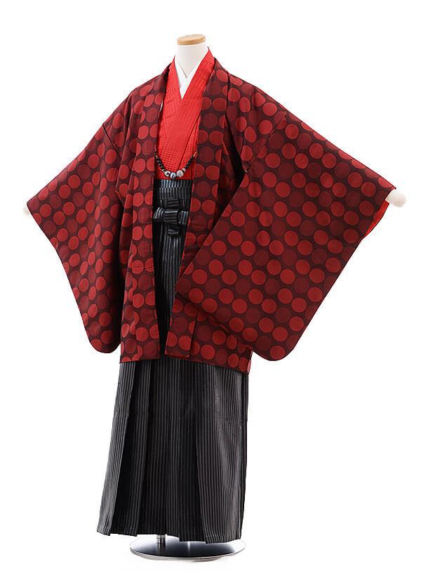 ジュニア袴男児9722 赤水玉×黒ラメ縞袴