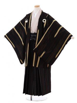 ジュニア袴男児Z051 九重 こげ茶 矢柄×こげ茶袴
