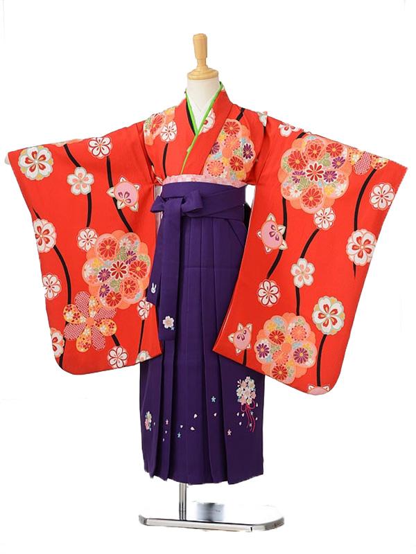 ジュニア(女の子袴)レンタル0791赤地花柄