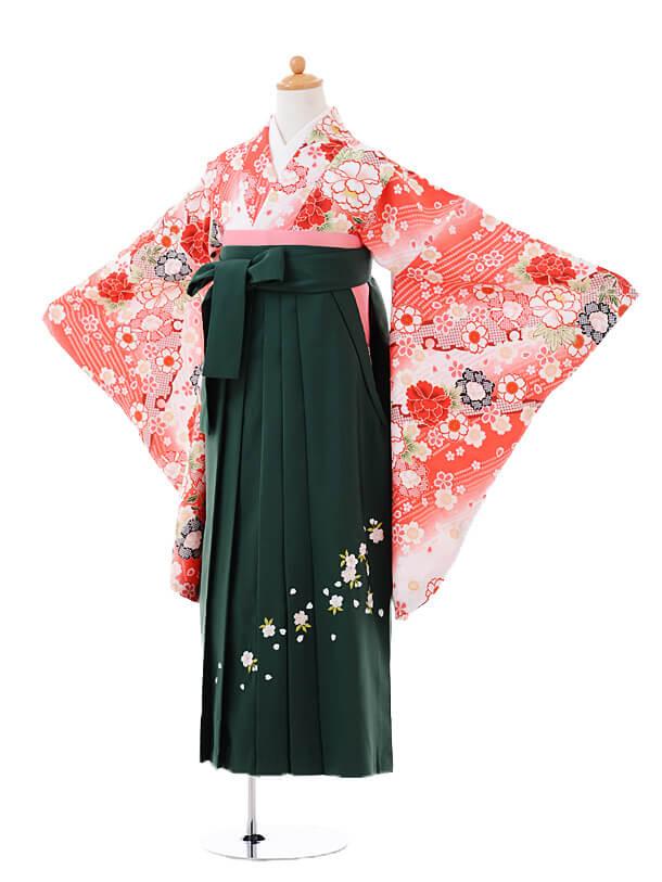 小学生卒業式袴女児0982白地ピンクぼかし花×緑袴