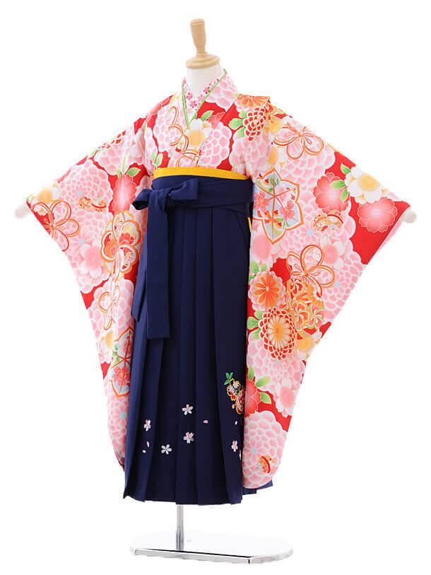 女児袴(7女)7277 赤地ピンク大花にまり×紺袴