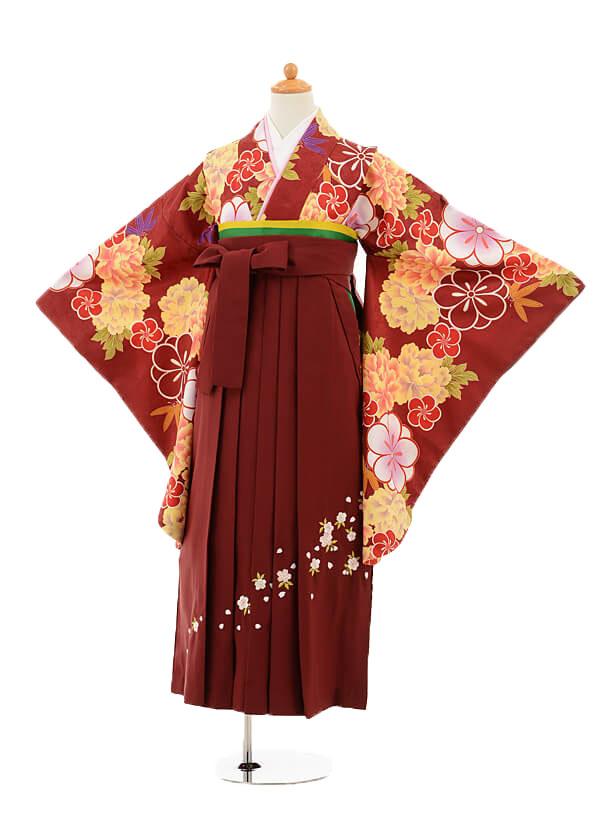 ジュニア袴女児9165 エンジ色牡丹×エンジ袴