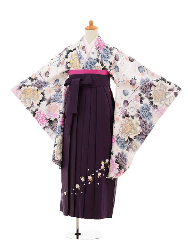 ジュニア袴女児9180 白地牡丹×パープル袴