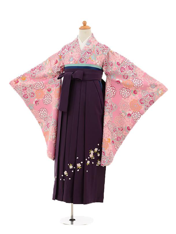 ジュニア袴女児9183 ピンク地橘花×パープル袴