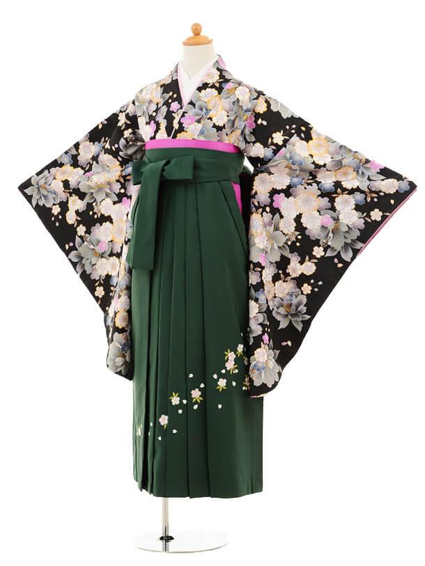 小学生卒業式袴女児9194 黒地グレー桜×グリーン