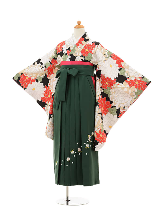 小学生卒業式袴女児9226 黒地菊×グリーン袴