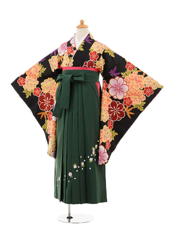 小学生卒業式袴女児9243 黒地牡丹×グリーン袴