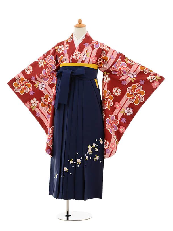 小学生卒業式袴女児9251 エンジ矢絣梅×紺袴