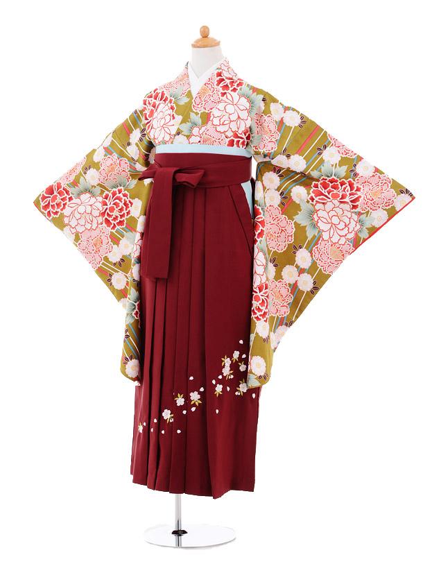 小学生卒業式袴女児9264 グリーン地牡丹×エンジ袴