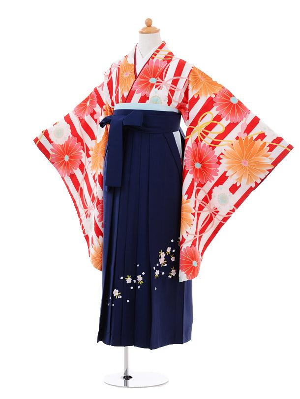小学生卒業式袴女児9344 赤ストライプ花×紺袴