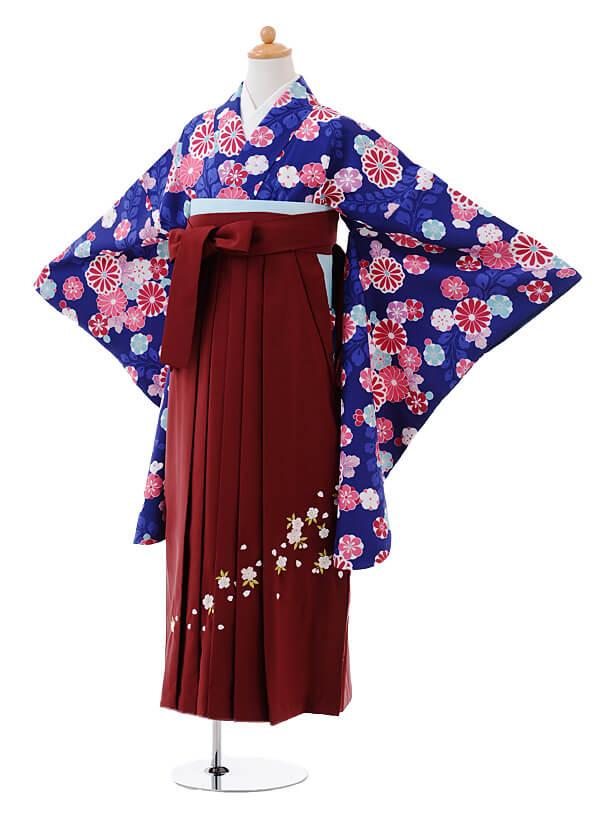小学生卒業式袴女児9384紺地菊藤×エンジ袴