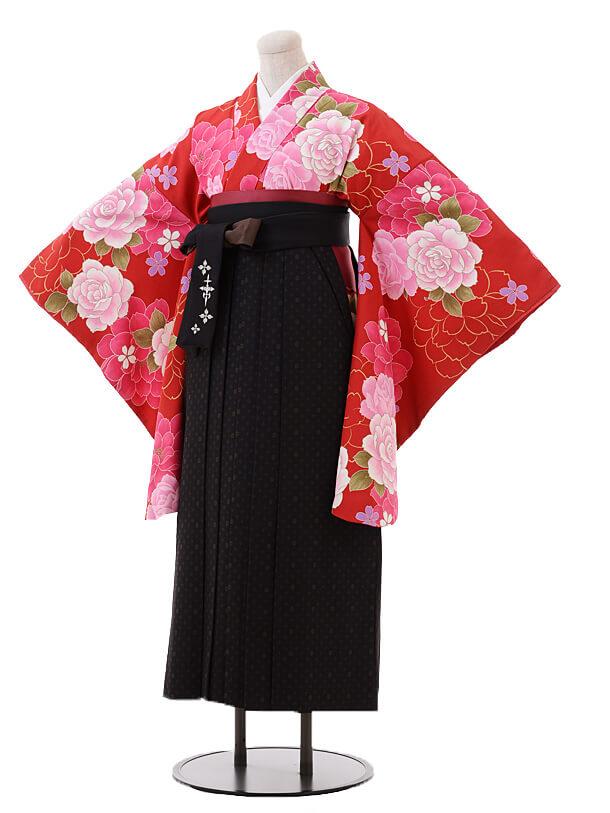 小学生卒業式袴女児9389赤地バラ×黒茶袴