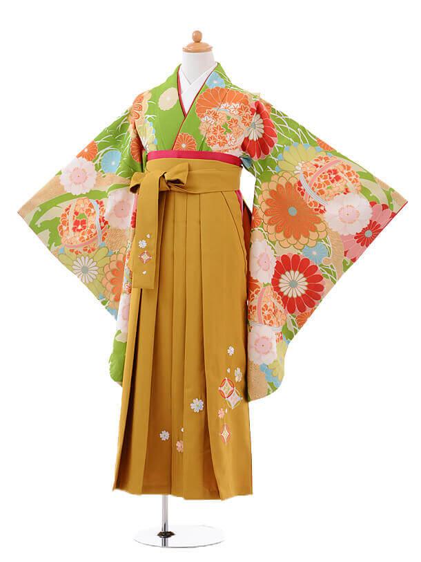 小学生卒業式袴女児9418黄緑菊に花くす玉×からし袴