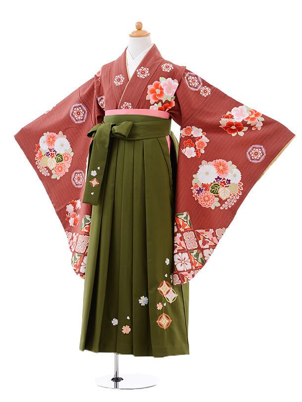 小学生卒業式袴女児9420白石麻衣赤茶色花玉×抹茶袴