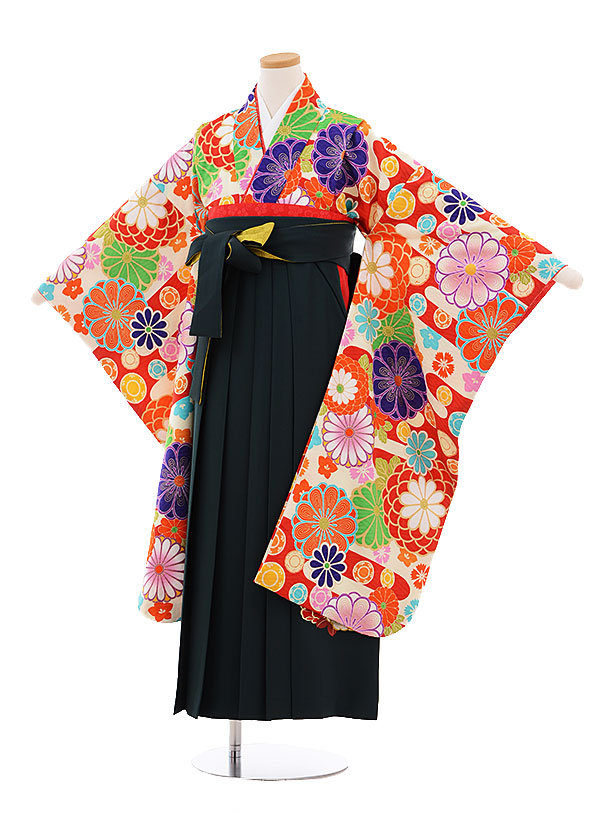 小学生卒業式袴レンタル9497九重クリーム地古典菊×グリーン袴