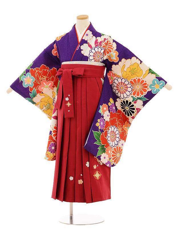 小学生卒業式袴レンタル(女の子)9509 紫古典×ローズ袴