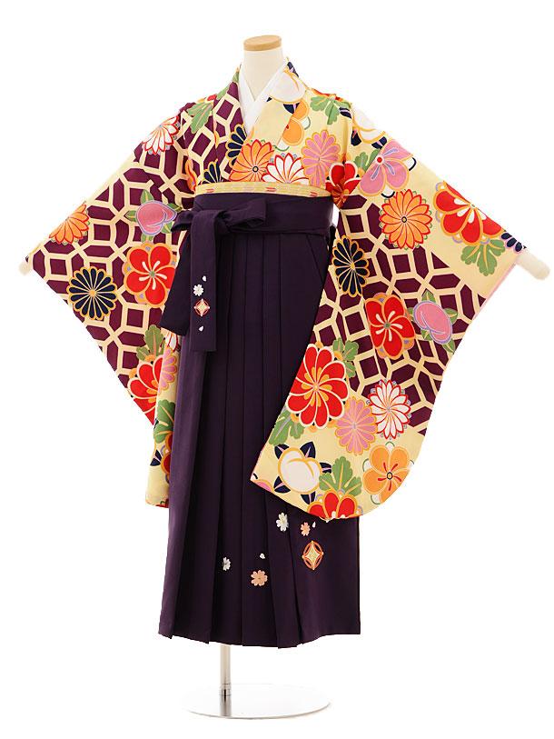 小学生卒業式袴レンタル(女の子)9518 紫地菊梅×パープル袴