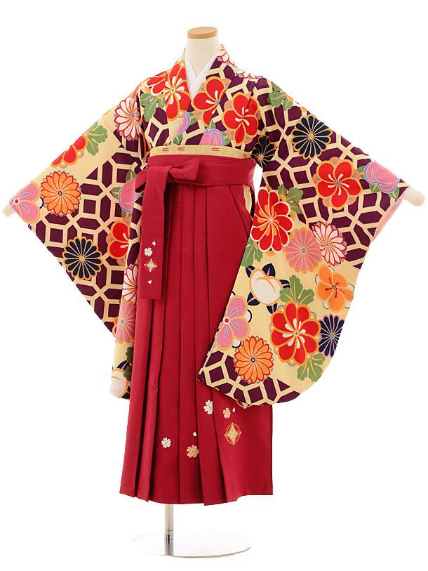 小学生卒業式袴レンタル(女の子)9519 紫地菊梅×ローズ袴