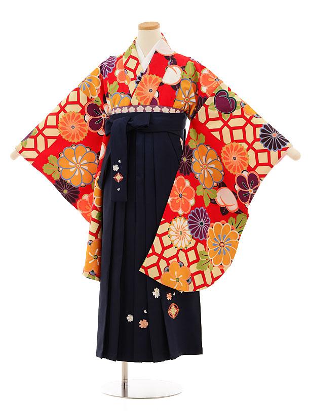 小学生卒業式袴レンタル(女の子)9524 赤地菊梅×紺袴