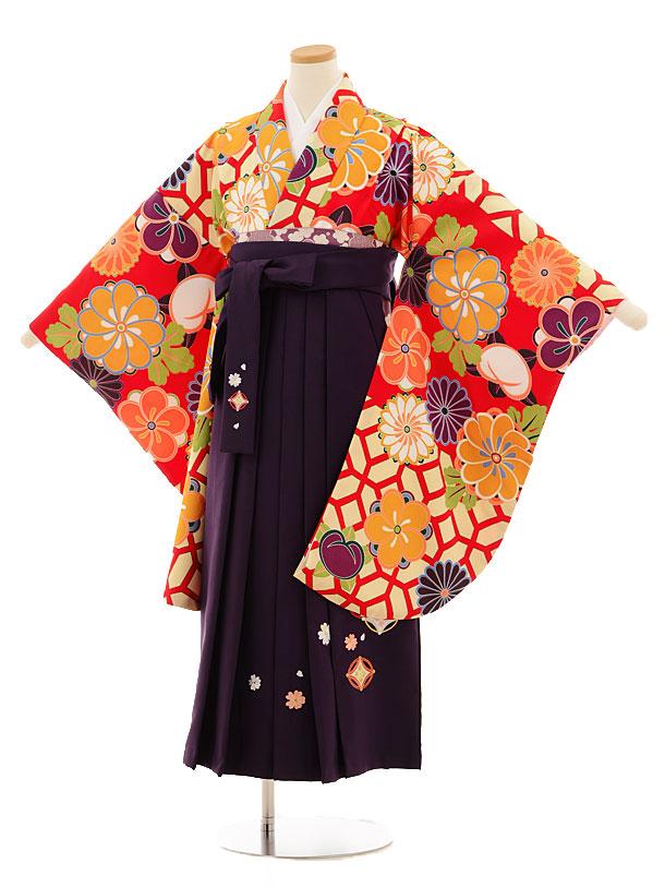 小学生卒業式袴レンタル(女の子)9525 赤地菊梅×パープル袴