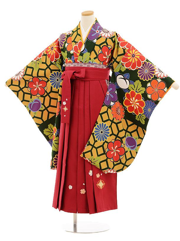 小学生卒業式袴レンタル(女の子)9533グリーン地菊梅×ローズ袴