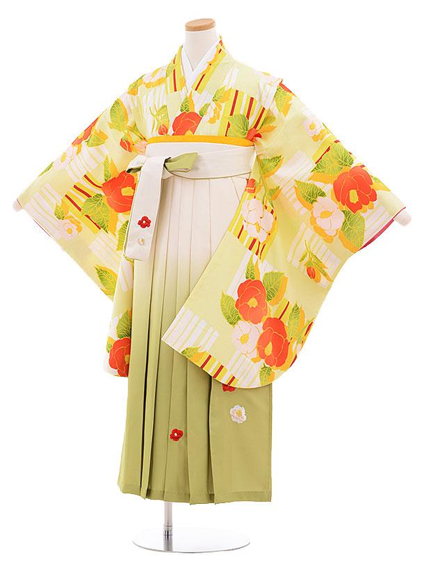 小学生卒業式袴レンタル(女の子)9549ひさかたろまん黄緑椿×クリーム袴