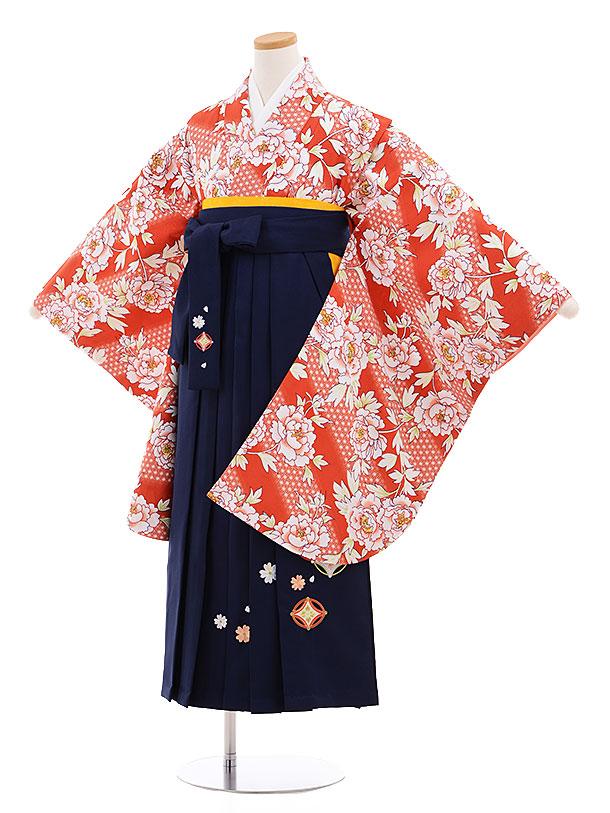 小学生卒業式袴レンタル(女の子)9561ひさかたろまん赤茶ぼたん×紺袴