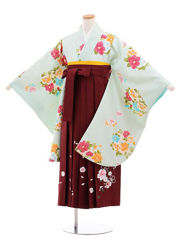 小学生卒業式袴レンタル(女の子)9602ペパーミントストライプ椿エンジ袴