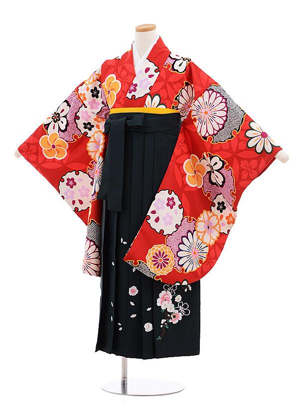 小学生卒業式袴レンタル(女の子)9609赤地雪輪×深緑袴