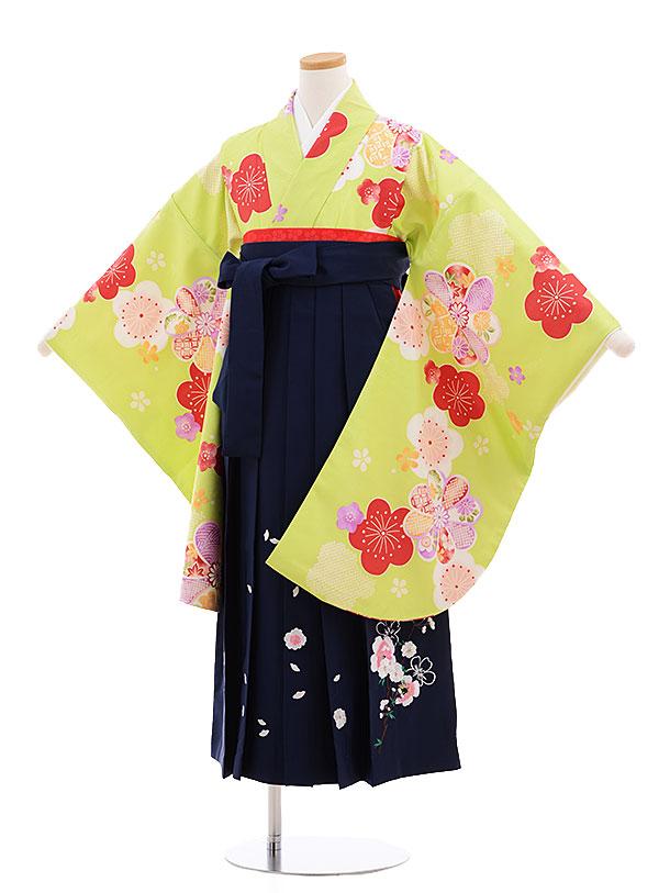 小学生卒業式袴レンタル(女の子)9611ライムグリーン梅×紺袴