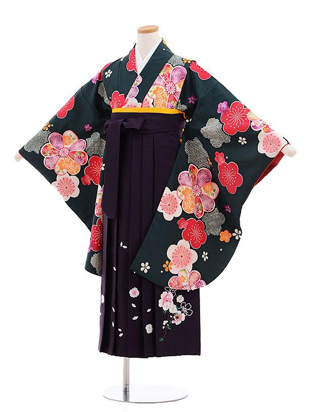 小学生卒業式袴レンタル(女の子)9612深緑梅×パープル袴