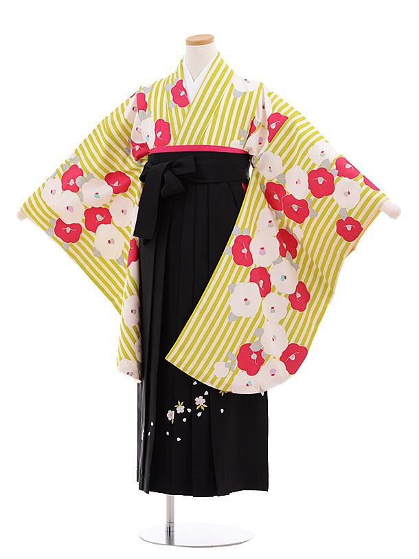 小学生卒業式袴レンタル(女の子)9621黄緑ストライプ椿×黒袴