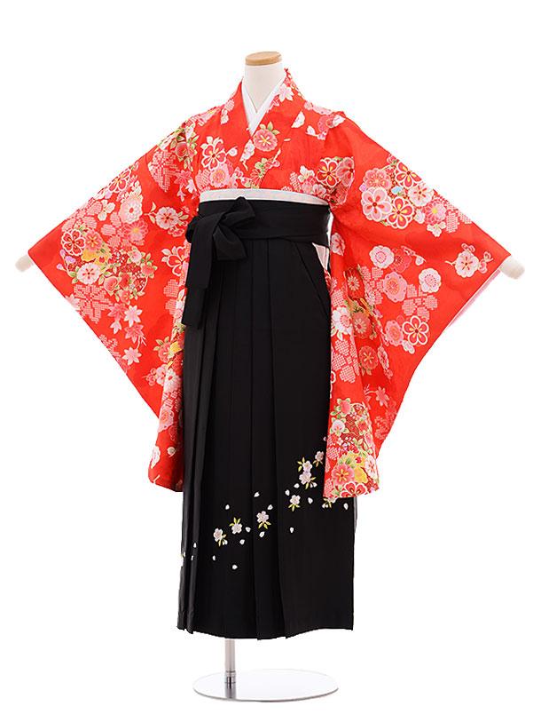 小学生卒業式袴レンタル(女の子)9631赤地雲取り花×黒袴