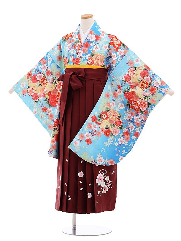 小学生卒業式袴レンタル(女の子)9641水色ぼかし菊桜×エンジ袴