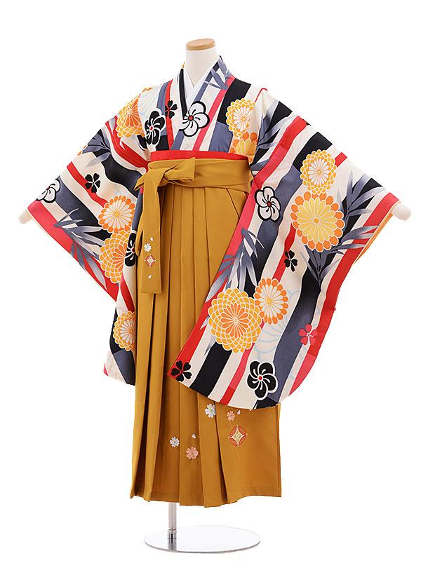 小学生卒業式袴レンタル(女の子)9658白地ストライプ菊×金茶袴