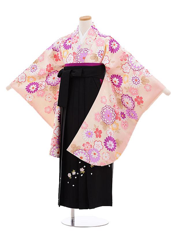 小学生卒業式袴レンタル(女の子)9666ライトピンク菊桜×黒袴