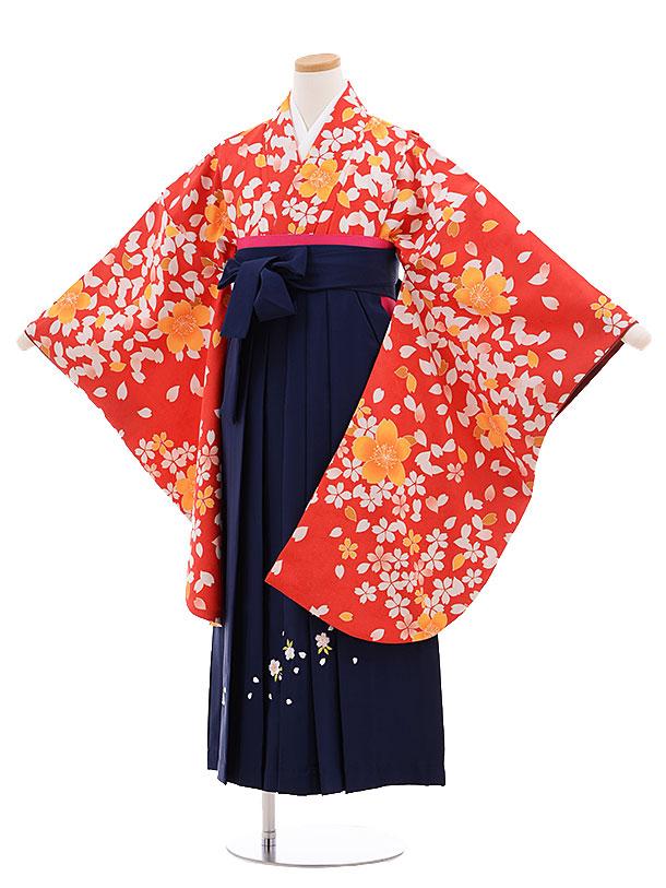 小学生卒業式袴レンタル(女の子)9685赤地桜×紺袴
