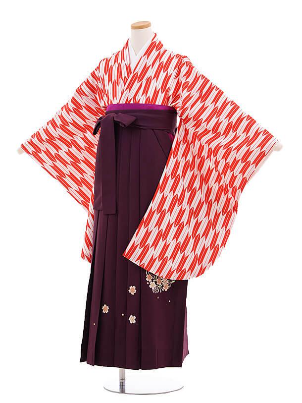 小学生卒業式袴レンタル(女の子)9695赤矢柄×紫袴