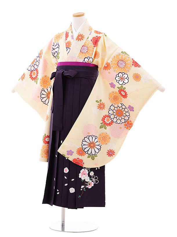 小学生卒業式袴レンタル(女の子)9728 クリーム色菊梅×パープル袴