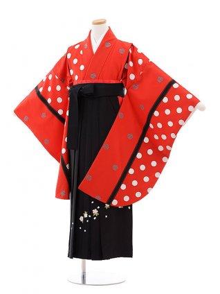 小学校卒業式袴レンタル(女の子)9755 赤地水玉×黒袴