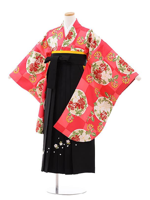 小学生卒業式袴レンタル(女の子)9762 ピンク市松丸に花×金茶袴